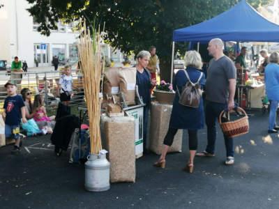 Miscanthus beim Krabat-Markt