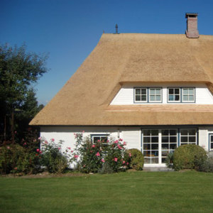 Bild  Building materials - thatched roof