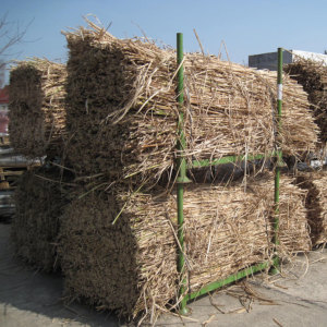 Industrial raw material - Whole plants