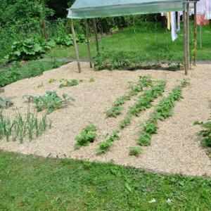 Bild Mulch cover – garden bed